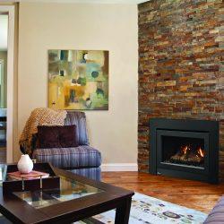 Regency IG34 Inbuilt Gas Fireplace