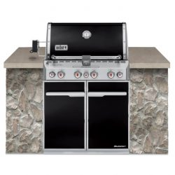Weber Summit E-460 Built In