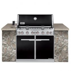 Weber Summit E-660 Built In