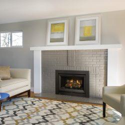 Regency DVi34L Gas Fireplace